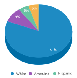 This chart display the percentage breakdown of students of all ethnic groups in Arbor Vitae-woodruff Elementary School.