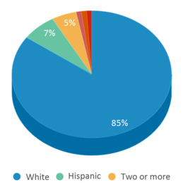 This chart display the percentage breakdown of students of all ethnic groups in Hanna Elementary School.