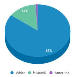 This chart display the percentage breakdown of students of all ethnic groups in Jefferson Elementary School.