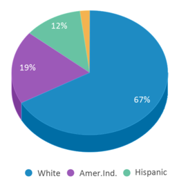 This chart display the percentage breakdown of students of all ethnic groups in Riverton High School.