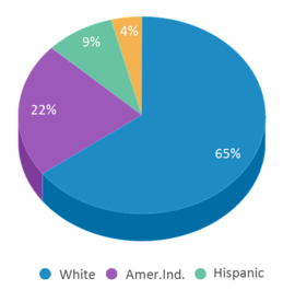 This chart display the percentage breakdown of students of all ethnic groups in Aspen Early Learning Center.