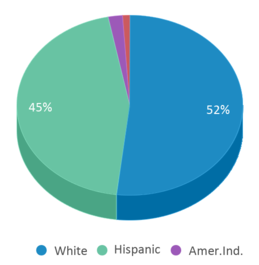 This chart display the percentage breakdown of students of all ethnic groups in Jackson Elementary School.