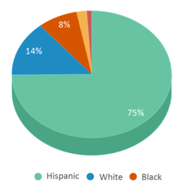 This chart display the percentage breakdown of students of all ethnic groups in Warren High School.