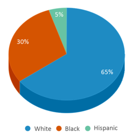This chart display the percentage breakdown of students of all ethnic groups in Wedgwood Campus.