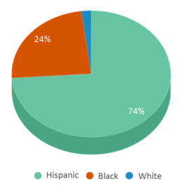 This chart display the percentage breakdown of students of all ethnic groups in Austin Can Academy Charter School.