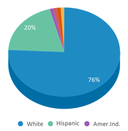 This chart display the percentage breakdown of students of all ethnic groups in Early Learning Center.