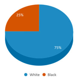 This chart display the percentage breakdown of students of all ethnic groups in Middletown Psych Center.