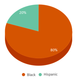 This chart display the percentage breakdown of students of all ethnic groups in Sing Sing Correctional Facility.