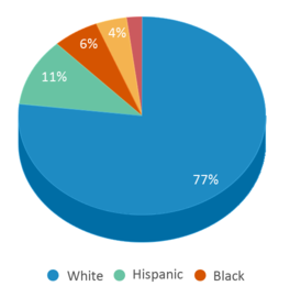 This chart display the percentage breakdown of public school students of all ethnic groups in IA.