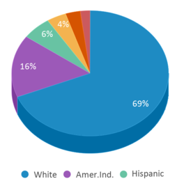 This chart display the percentage breakdown of public school students of all ethnic groups in SD.