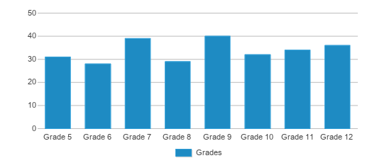 This chart display the students of Colo-nesco Middle/High School by grade.