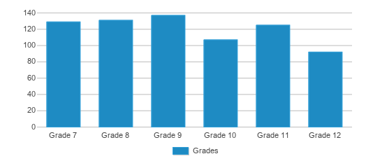 This chart display the students of Virginia Secondary by grade.