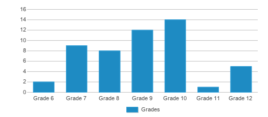 This chart display the students of Excel Institute by grade.
